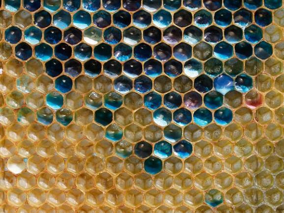 Colored-honey