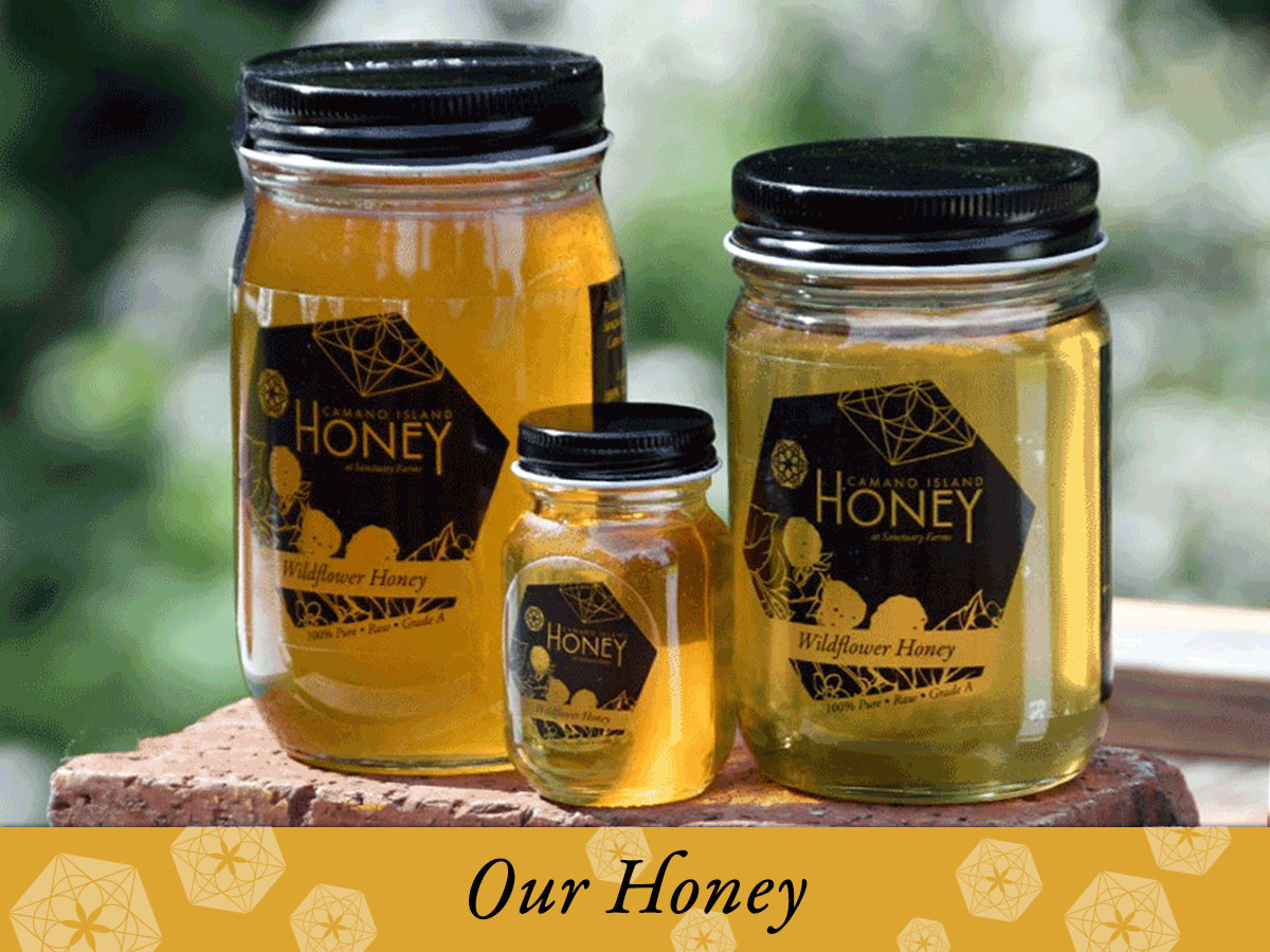 100% Natural Camano Island Honey